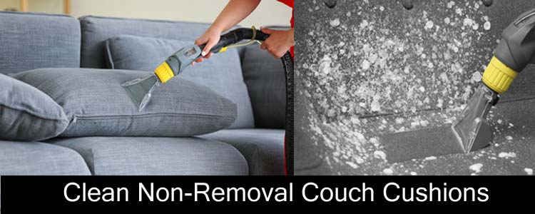 Clean Non-Removable Couch Cushions